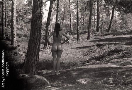 y i skogen 09